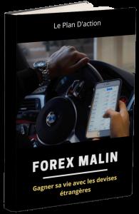 Gagner sa vie avec les devises étrangères