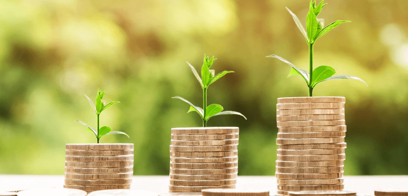 Comment gagner de l'argent en faisant des recherches sur internet? Avec Max-Avis
