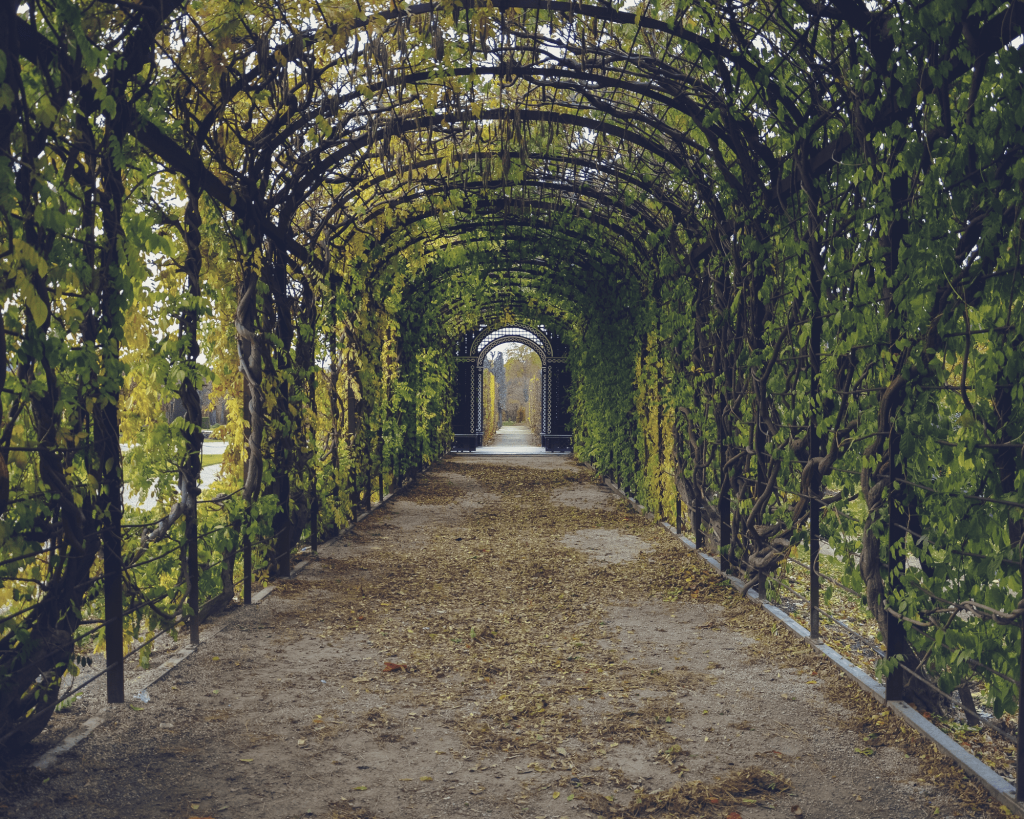 Entretenir des espaces verts