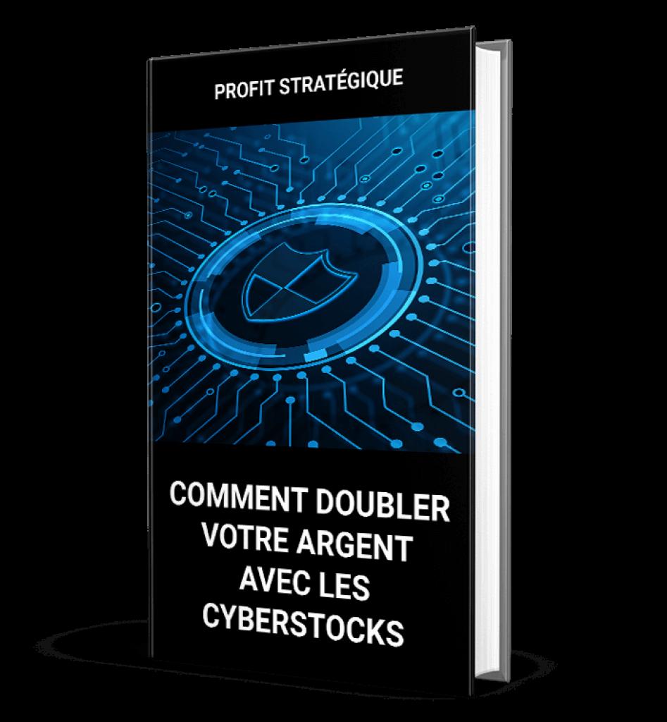 Comment-doubler-votre-argent-avec-les-Cyberstocks